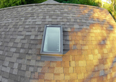 Roof Inspection (1 of 1)